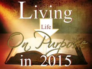 12-31-2014 WED Living Life On Purpose in 2015