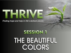 01-05-2016 THRIVE - Session 1 - The Beautiful Colors